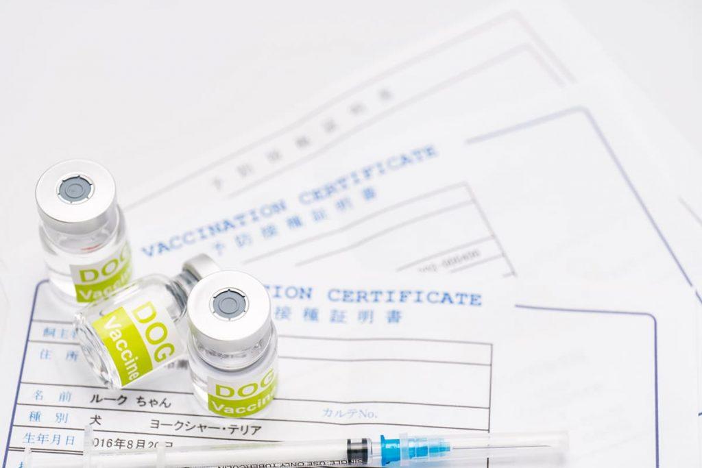混合ワクチンイメージ写真